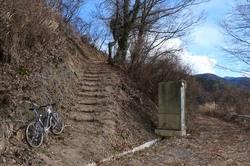 桜峠の林道ピーク