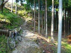 登りの細道