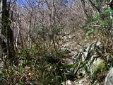 ガレた山径