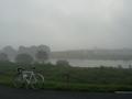 朝霧の江戸川