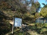「オオムラサキの森」の案内板