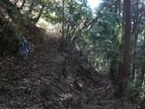 桑ノ代峠への径