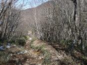 八丁峠への山道1