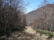 八丁峠への山道2