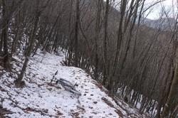 雪道の下り