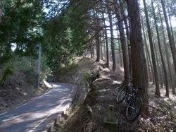 舗装路から道坂峠への径分岐